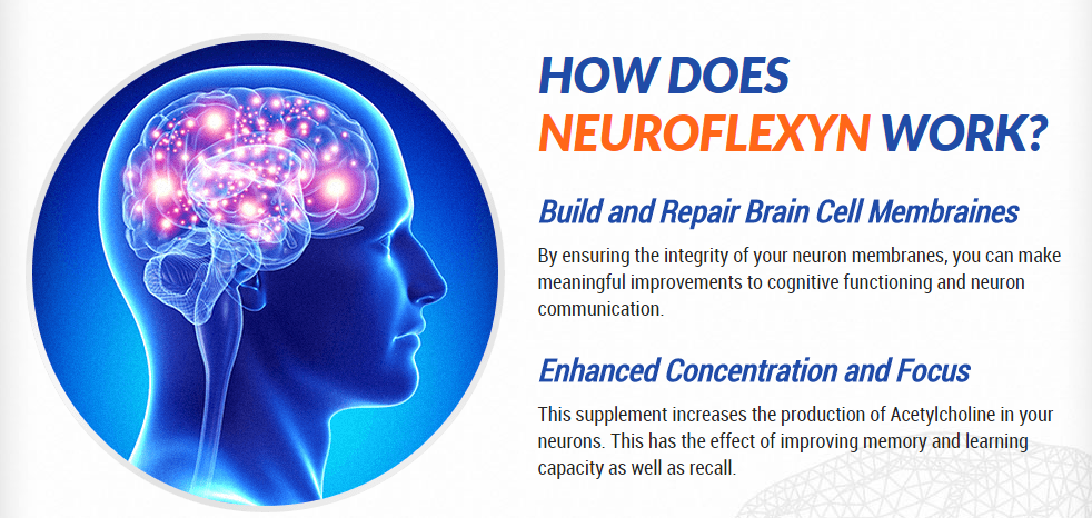 How does Neuroflexyn work